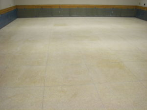 Terrazzo After Glue Down Carpet Removed Elite Stone Services